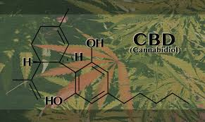 cbd graphic