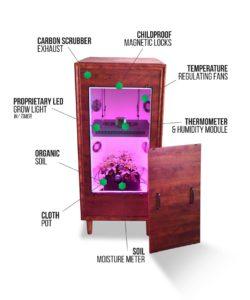 the armoire organic biochamber